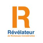 Logo_Revelateur-de-Richesses-Immaterielles